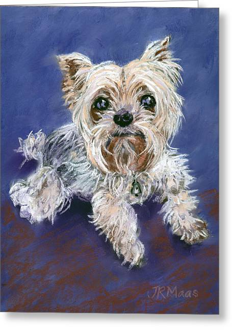 Sweet Yorkie Greeting Card