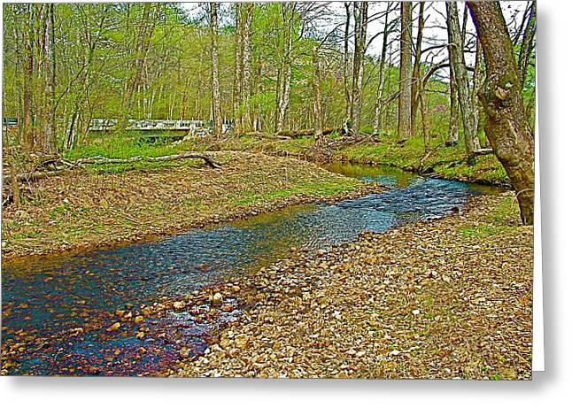 Sweetwater Branch On Mile 363 Of  Natchez Trace Parkway-tennessee  Greeting Card by Ruth Hager