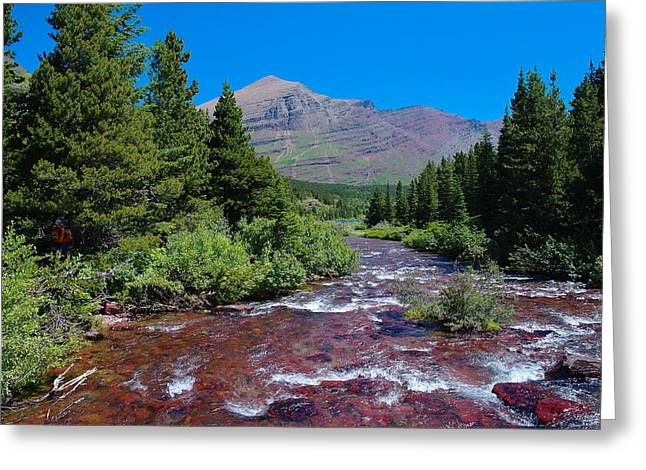 Swift Current River Greeting Card