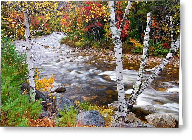 Swift River Greeting Card