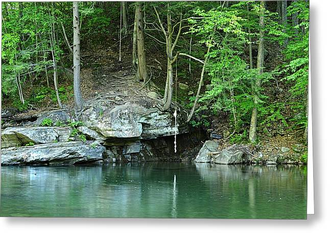 Swimming Hole At Rock Run Greeting Card