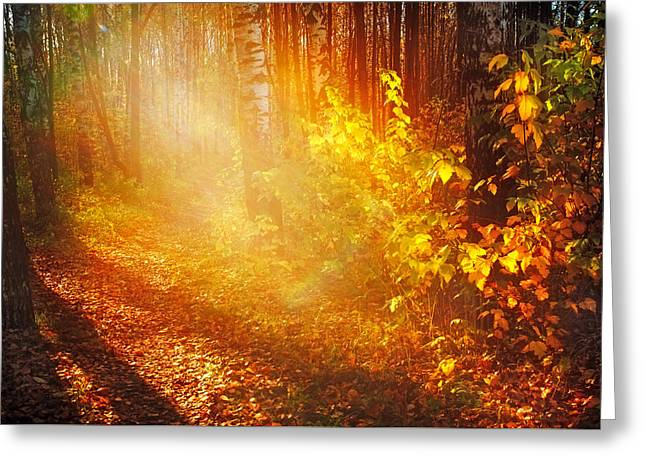 Swimming In Golden Light Greeting Card by Jenny Rainbow