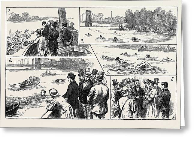 Swimming Match In The Thames For The Amateur Championship Greeting Card by English School