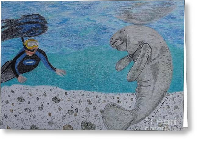 Swimming With The Manatee Greeting Card