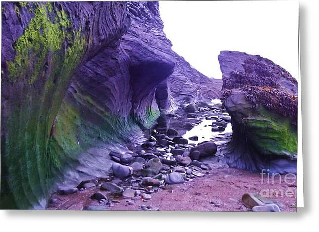 Greeting Card featuring the photograph Swirl Rocks by John Williams