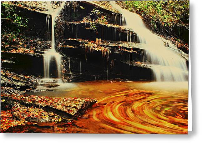 Swirling Leaves Greeting Card by Rodney Lee Williams