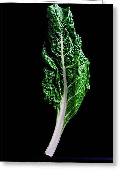 Swiss Chard Greeting Card