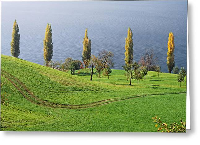 Switzerland, Lake Zug, View Of A Row Greeting Card by Panoramic Images