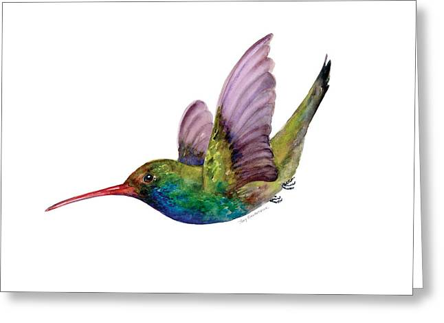 Swooping Broad Billed Hummingbird Greeting Card by Amy Kirkpatrick