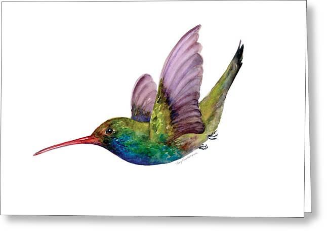Swooping Broad Billed Hummingbird Greeting Card