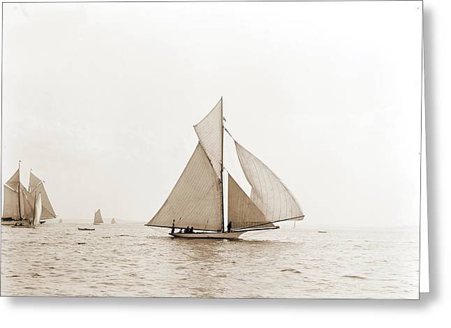 Swordfish, Swordfish Yacht, Yachts Greeting Card by Litz Collection