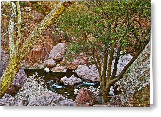 Sycamore And Cottonwood In Whitewater Catwalk National Recreation Trail Near Glenwood-new Mexico  Greeting Card by Ruth Hager