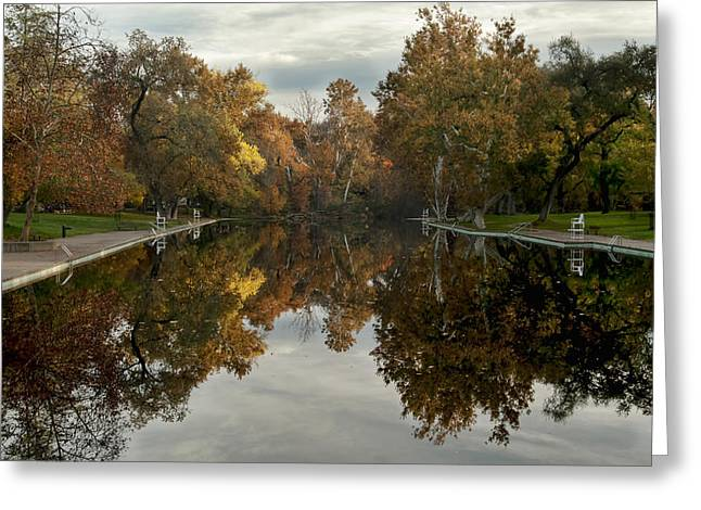 Sycamore Pool Reflection Greeting Card
