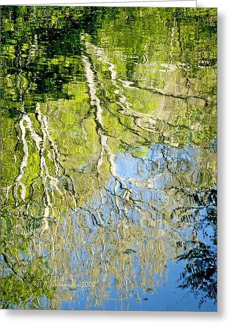 Greeting Card featuring the photograph Sycamore Trees Reflected In A Stream by A Gurmankin