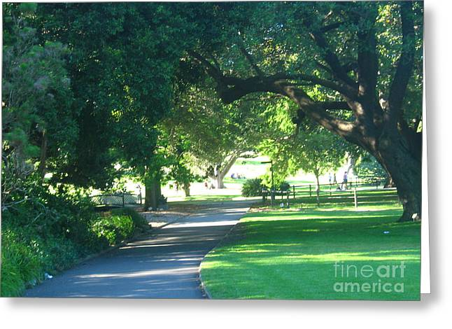 Greeting Card featuring the photograph Sydney Botanical Gardens Walk by Leanne Seymour