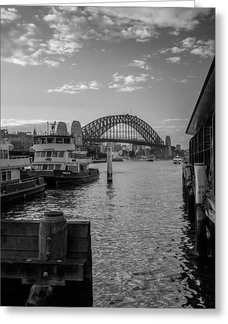 Sydney Harbour  Greeting Card by Dasmin Niriella