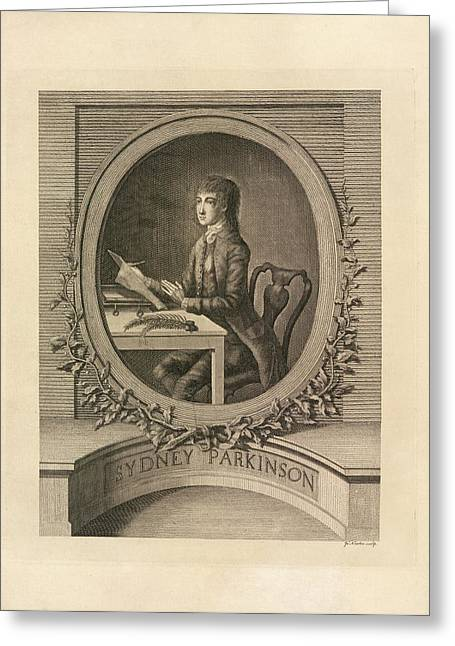 Sydney Parkinson Greeting Card by British Library