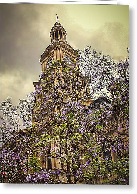 Sydney Town Hall Greeting Card by Julie Palencia