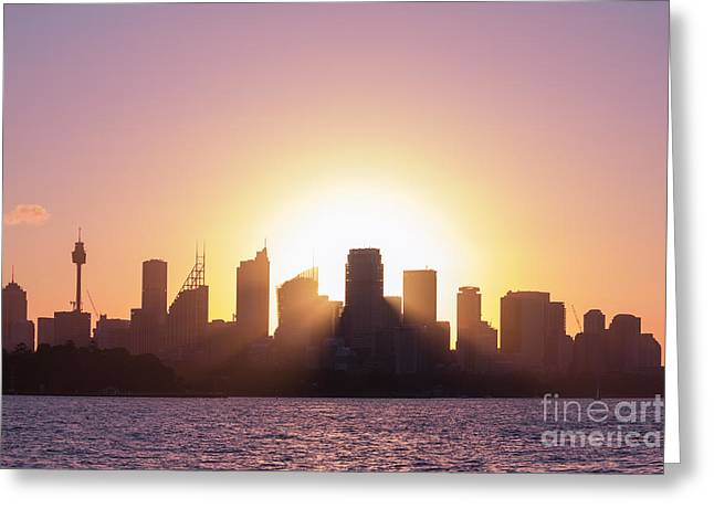 Greeting Card featuring the photograph Sydney's Evening by Jola Martysz