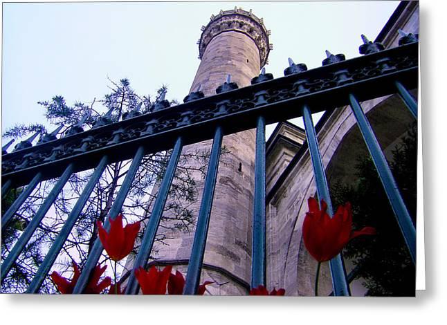 Symbols Of Istanbul Greeting Card