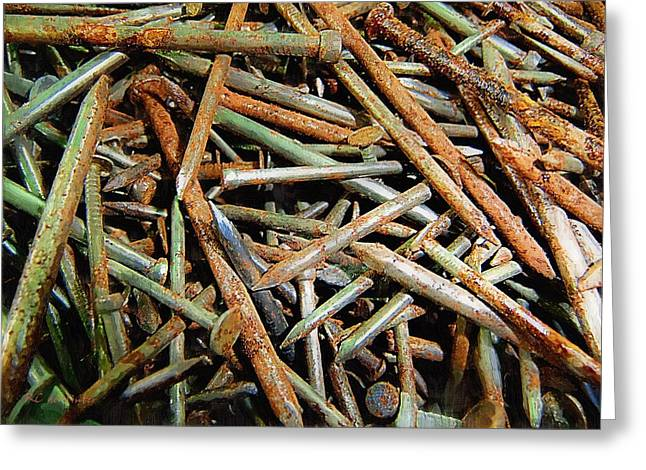 Symphony In Rusty Nails Greeting Card by RC deWinter