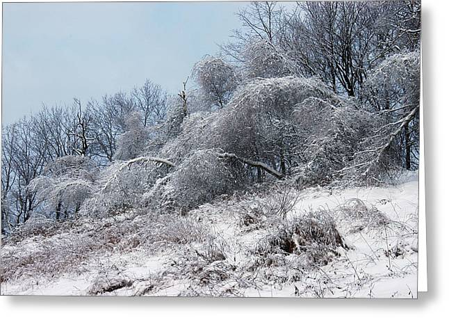 Syracuse Ice Storm Greeting Card