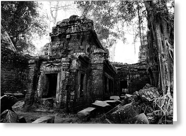Ta Prohm At Dawn Greeting Card by Julian Cook