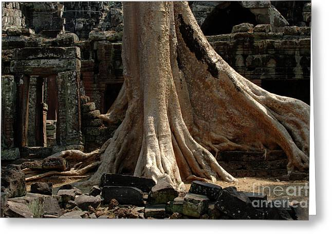 Ta Prohm Cambodia Greeting Card by Bob Christopher