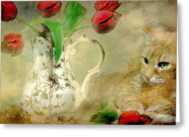 Tabby And Tulips Greeting Card by Diana Angstadt