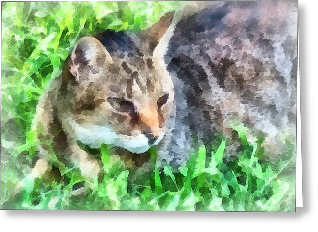 Tabby Cat Closeup Greeting Card by Susan Savad