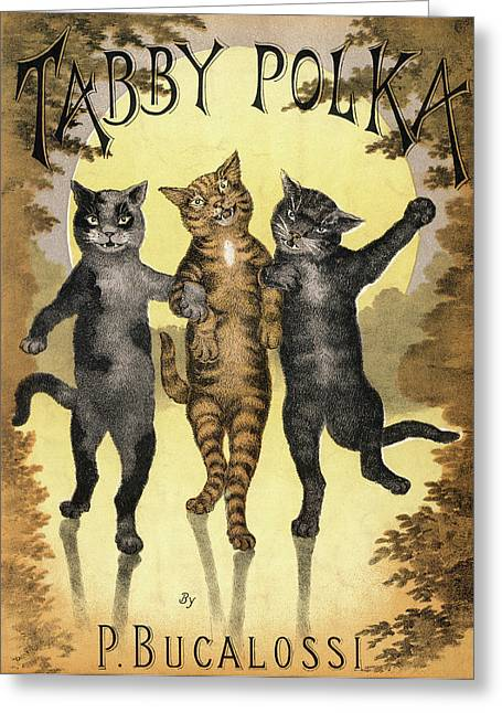 Tabby Polka  A Trio Of Cats With Arms Greeting Card
