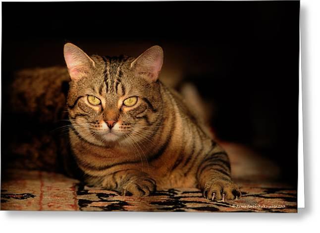 Tabby Tiger Cat Greeting Card by Renee Forth-Fukumoto