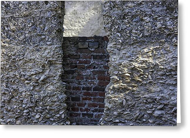 Tabby Wall With Red Brick Infill Greeting Card by Lynn Palmer