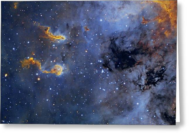 Tadpole Nebula Greeting Card by Tony & Daphne Hallas