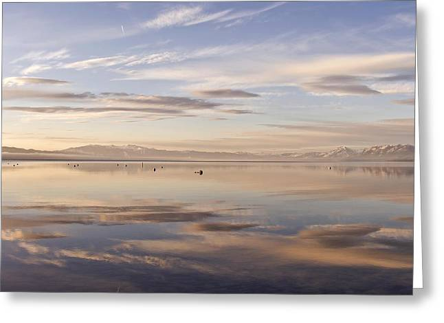 Tahoe March Morning Larry Darnell Greeting Card by Larry Darnell