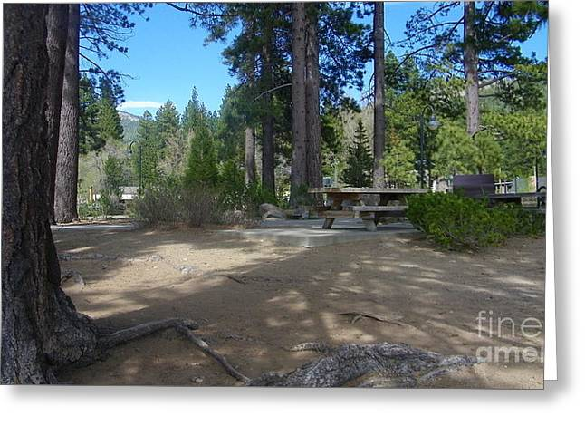 Greeting Card featuring the photograph Tahoe's Summer Invitation by Bobbee Rickard