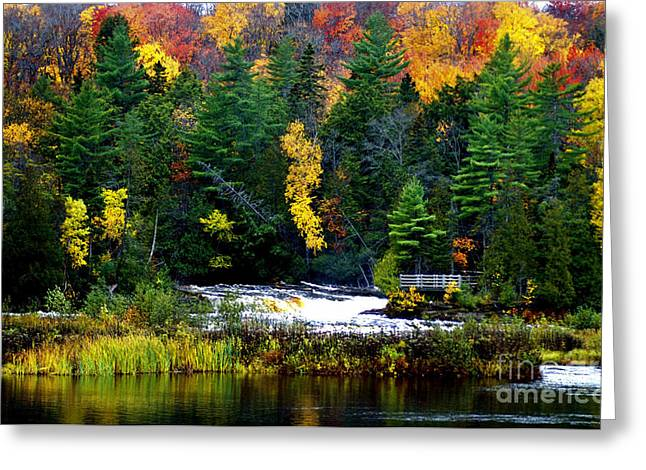 Tahquamenon Falls Lower Falls Greeting Card by Optical Playground By MP Ray