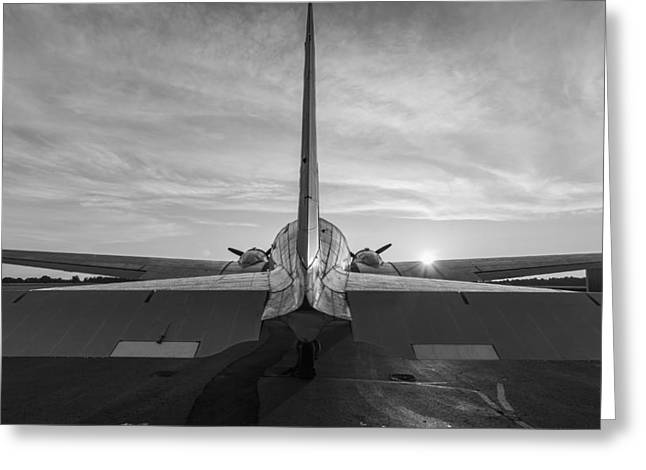 Tail End Of The Sunrise Black And White Greeting Card by Amber Kresge