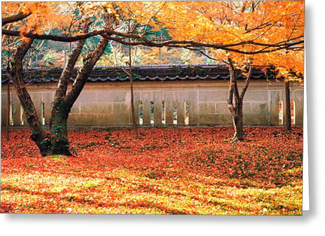 Takagamine Shouzan Kyoto Japan Greeting Card by Panoramic Images