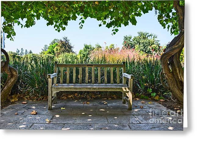 Take A Seat - Under A Pretty Gazebo Covered In Grape Vines And Leaves. Greeting Card