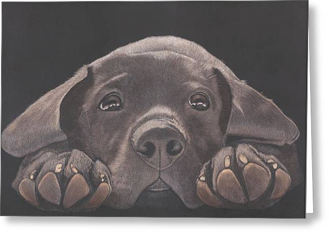 Take Me Home - Chocolate Lab Puppy Greeting Card by Joelle