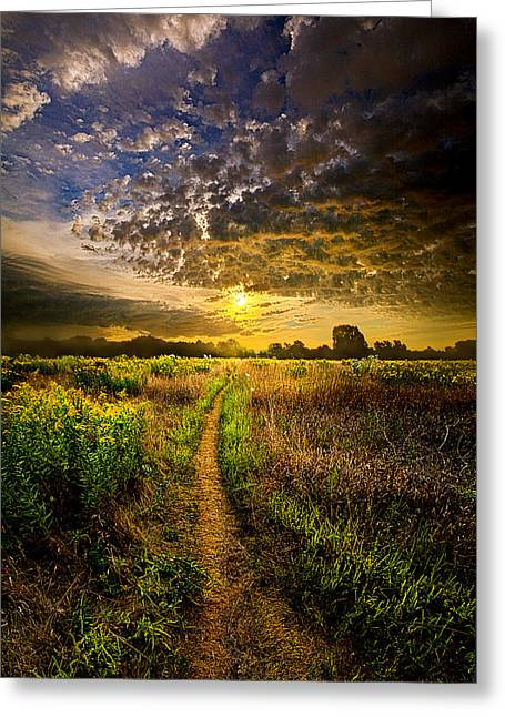 Take My Hand Greeting Card by Phil Koch