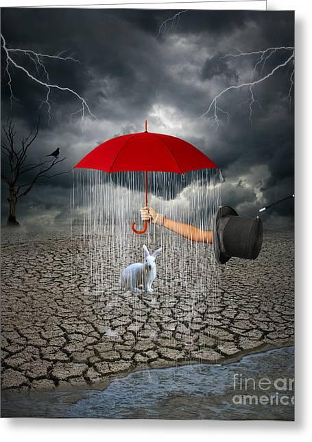 Take This.. It May Rain Greeting Card