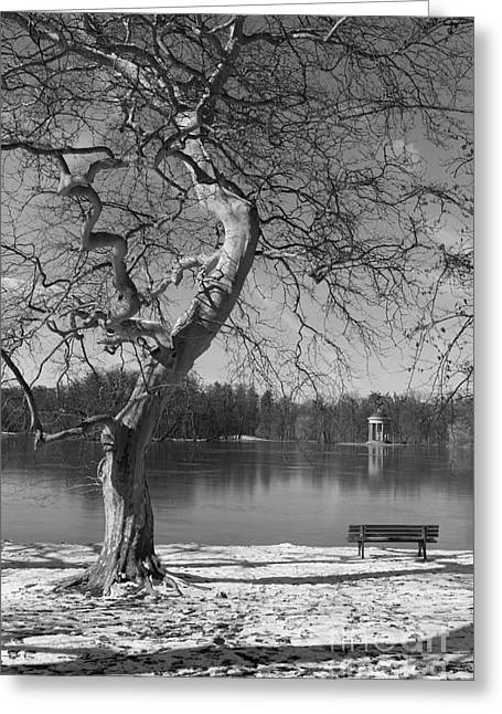Greeting Card featuring the photograph Take Your Time  by Juergen Klust