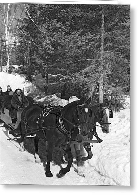 Taking A Sleigh Ride In Canada Greeting Card