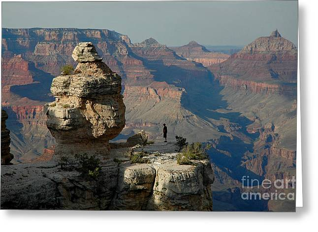 Greeting Card featuring the photograph Taking It All In by Nick  Boren