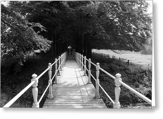 Taking The Bridge To Greeting Card