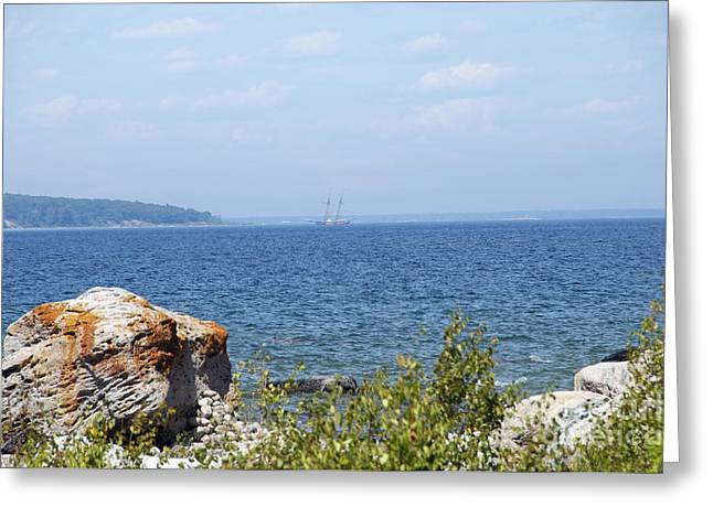 Tall Ship At Awenda Provincial Park Greeting Card by Elaine Mikkelstrup