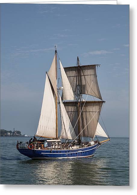 Tall Ship Playfair Greeting Card by Dale Kincaid