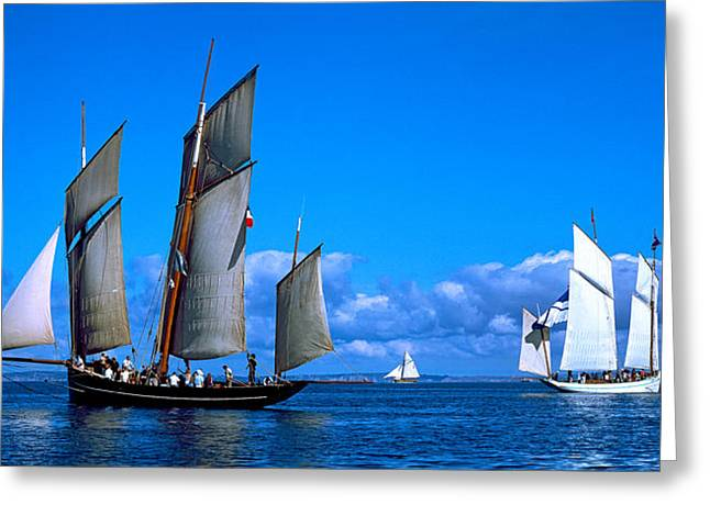 Tall Ship Regatta Featuring Cancalaise Greeting Card by Panoramic Images